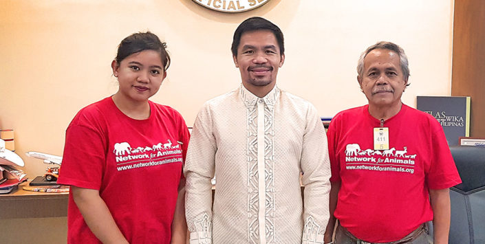Boxing legend Manny Pacquiao to fight against the dog meat trade
