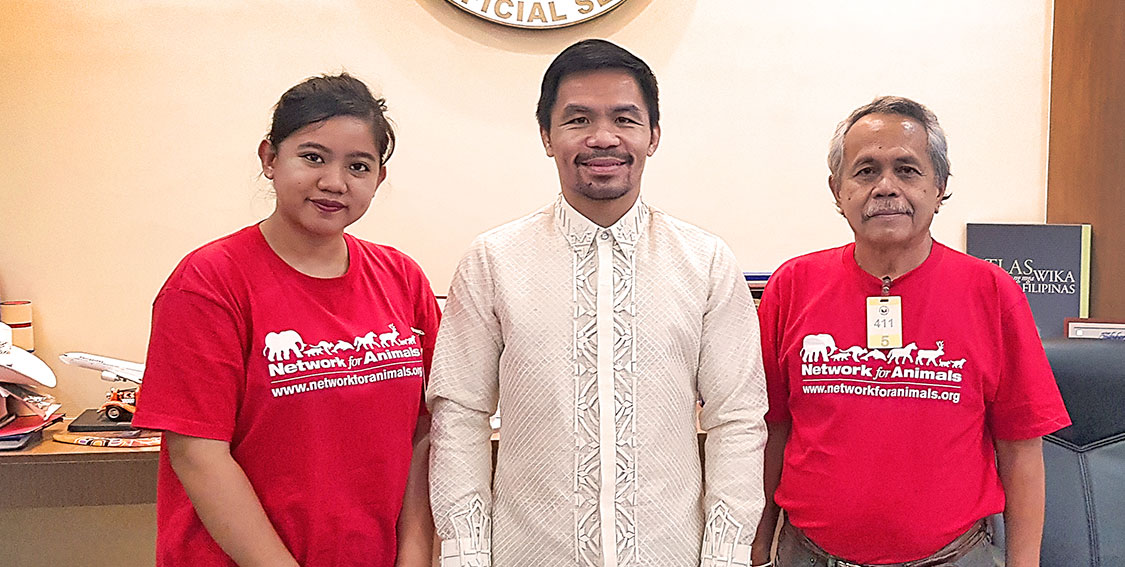 Boxing legend Manny Pacquiao to fight against the dog meat trade 3