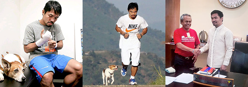 Boxing legend Manny Pacquiao to fight against the dog meat trade 1
